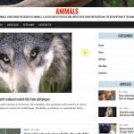 Автонаполняемый англоязычный сайт Animals, для заработка на Google Adsense